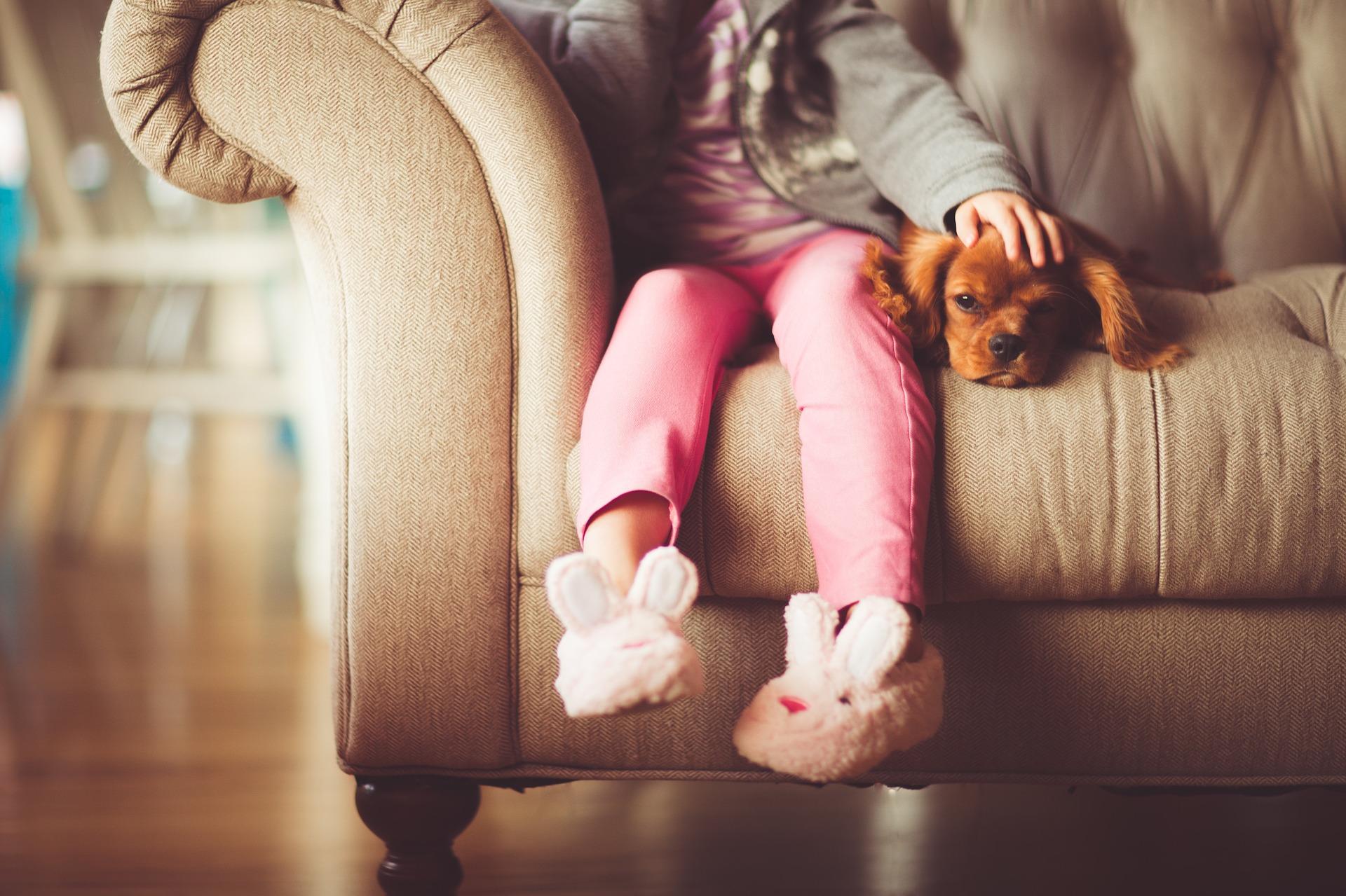 Mamo , mamo chcemy psa!