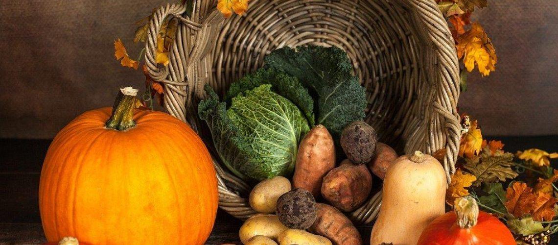 21-11-2108 JMG pumpkin-1768857_1280