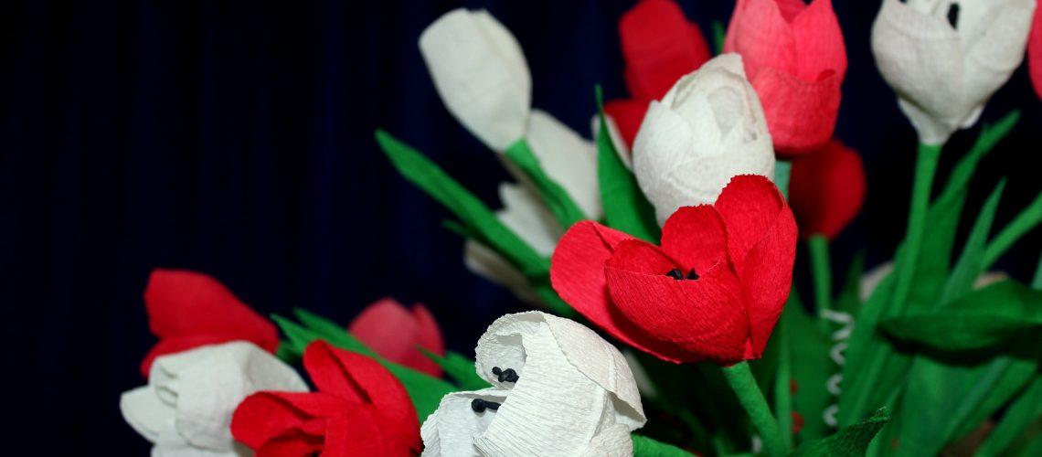 flowers-3766096_1920