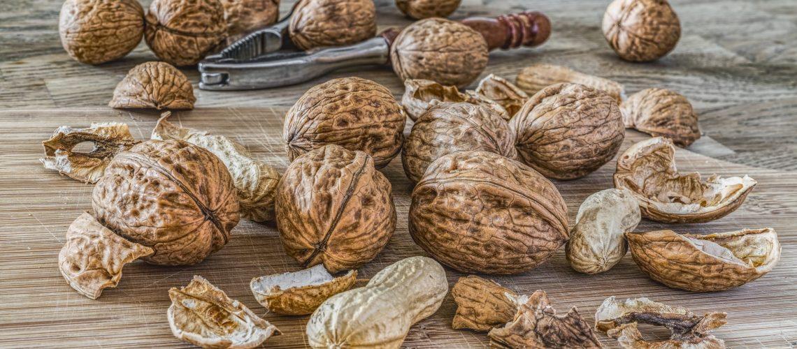 nuts-2971675_1920